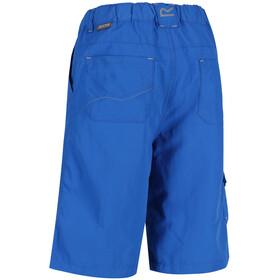 Regatta Sorcer korte broek Kinderen, skydiver blue